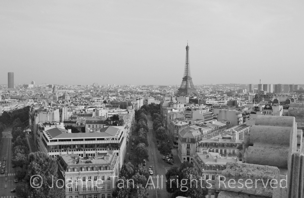Eiffel Tower in the city scape of buildings and towers, boulevards lined with trees.