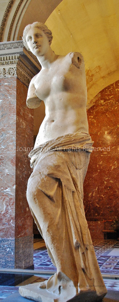 A full-body stone statue of Venus against the arched ceiling, marble walls, column, and floor, inside the Louvre Museum, Paris, France.